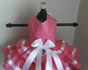Dog Dress  Hot Pink with White polkadot with trim