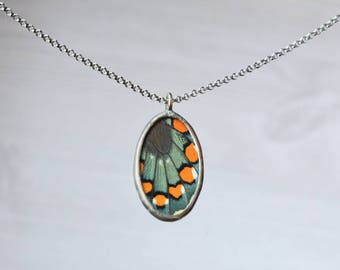 Oval Pipevine Swallowtail Necklace - Butterfly