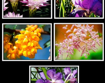Photo Note Cards - Floral Collection #1