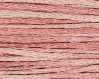CHARLOTTE'S PINK 2282 Weeks Dye Works WDW hand-dyed embroidery floss cross stitch thread at thecottageneedle.com