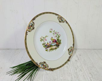 """Salad or Luncheon Plate in Noritake Morimura Chelsea Pattern Dinnerware Individual Fine China Salad / Luncheon 8 1/2"""" Plate - 10 Available"""