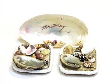 3 Vintage Seashell Magnets, Monterey California Souvenirs, Nautical Beach Kitsch Home Decor itsyourcountry