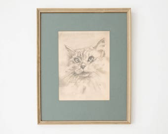 Vintage Cat Drawing