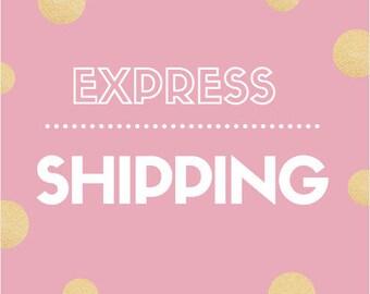 UAE express shipping