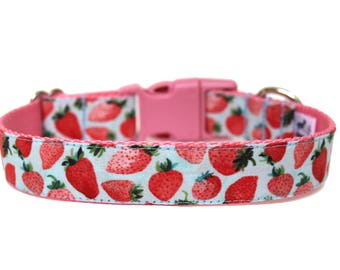 "Strawberry Dog Collar 1"" Summer Dog Collar Fruit Dog Collar"