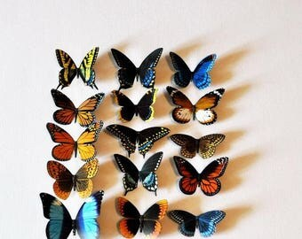 Butterfly Magnets Set of 15 Insects Kitchen Magnets Refrigerator Magnets Home Decor Gifts Home and Living