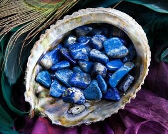 Tumbled Lapis Lazuli Gemstones