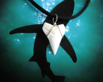 """Shark Tooth Necklace, Modern Day White Shark tooth, Silver plated wire, 20"""" Suede leather cord"""
