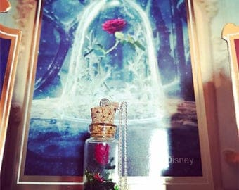 The eternal beauty and the beast rose necklace