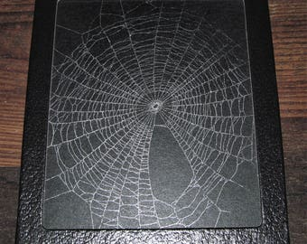 Real framed preserved spider web orb weaver 6in x 5in