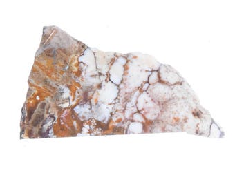 Wildhorse Magnesite Jasper Slab Orby Orbicular Cabbing #2172