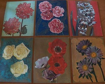 Set of six VINTAGE Cards unused..Floral Bright Petal Notes..Flowers..Carnation..Poppy..Rose..Daisy..