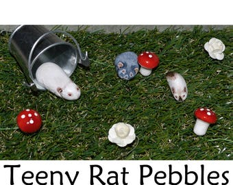 Pebble Rats - Teeny Pocket Pets Painted in Acrylics - Many Fancy Rat Varieties to Choose - Great Mementoes, Gift Idea