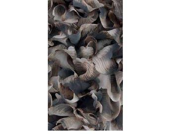 Ruffle scarf tulle edge tortoiseshell - coffee hit col311