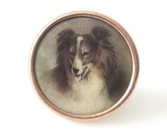 Antique Collie Color Lithograph Celluloid Waistcoat Button