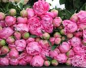 Paris flower photo, fine art Paris photography, Valentine's Day photography, wall decor, peony bouquets