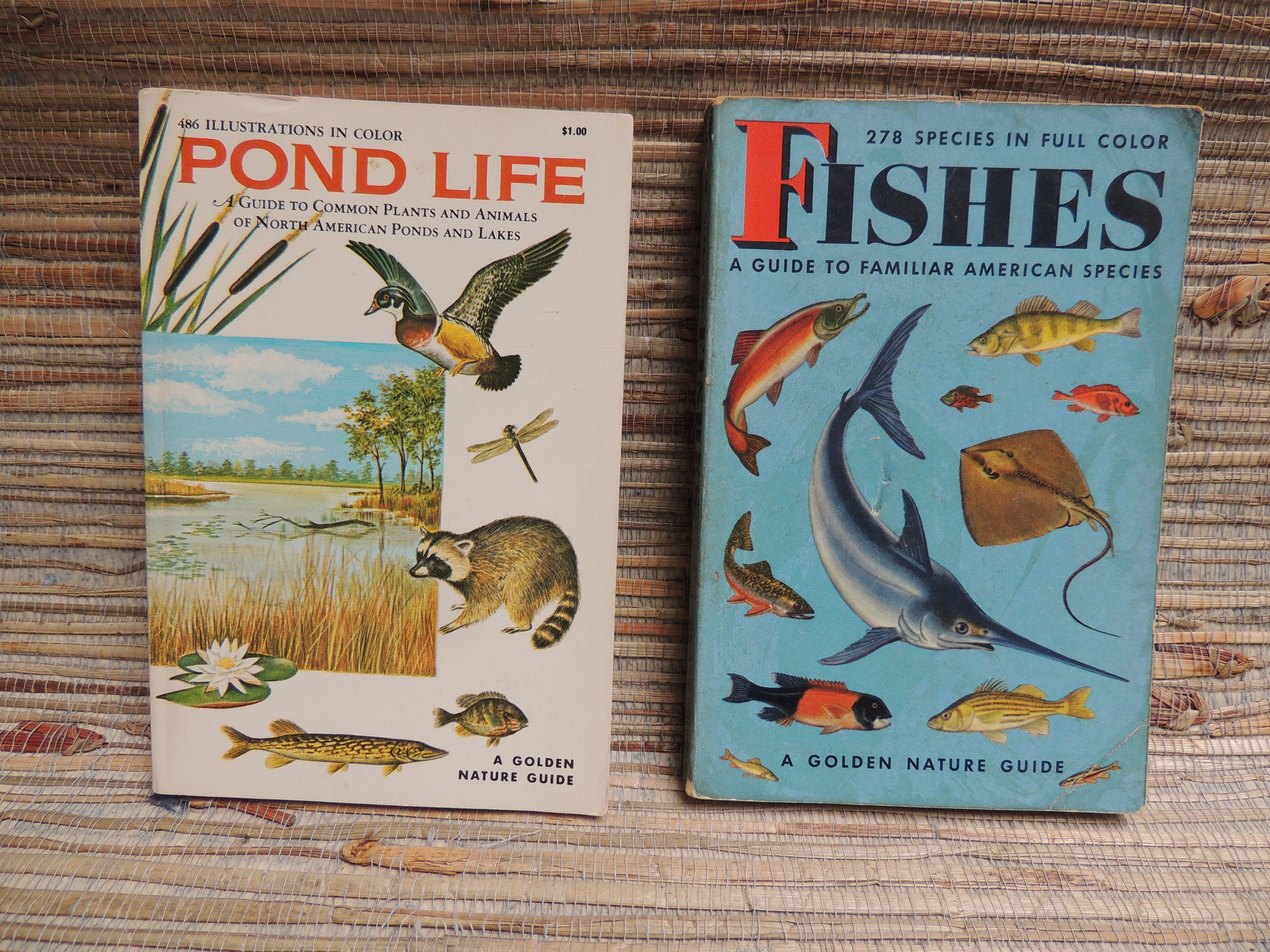 Golden Guides - Pond Life - Flinn Scientific