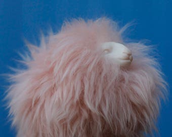 Pink sheep - Arttoy - 16 -
