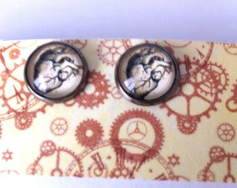 Anatomical heart cabochon earrings