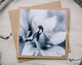 Floral Photo Card - When autumn and spring meet each other - Less colors, more feelings...