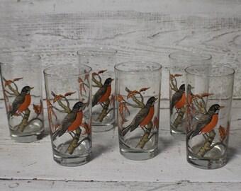 Vintage Robin Glasses, Set of 6 Bird Drinking Glasses