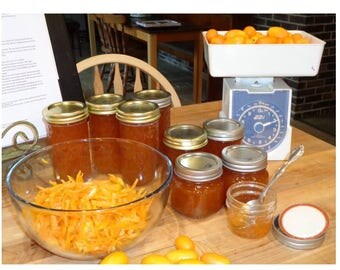 ONE, 1/2 pint (8 oz.) kumquat marmalade