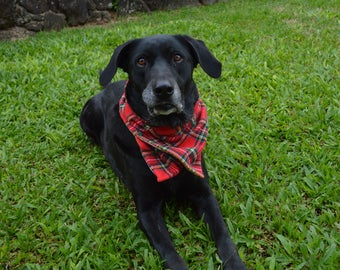 Flannel neck warmer scarf for dogs, plaid neck warmer, pet neck warmer, holiday neck wear