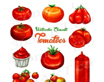 50% OFF Tomato Clipart, Watercolor Tomatoes Clip art, Garden Vegetable, Ketchup, Tomato Illustration, Hand Painted Elements, Commercial