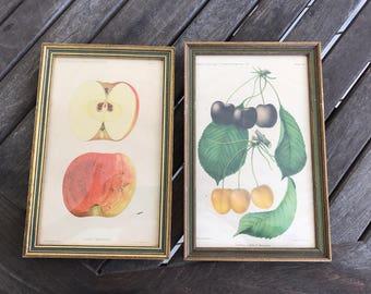 Pair of original William Prestele 1890s lithocaustics in original frames