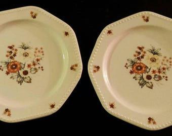 Vintage Set of 2 Ironstone Octagon Bouquet 4565 Salad Plates