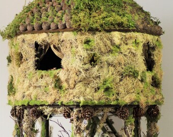 Enchanted Woodland Fairy Pixies Doll House Diorama in 1:12 scale with fairy lights
