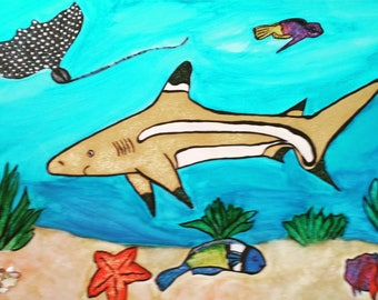 Shark on Reef