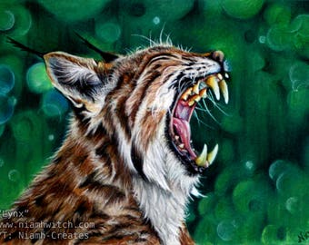 Lynx - ARTWORK - *Donation Made With Purchase*
