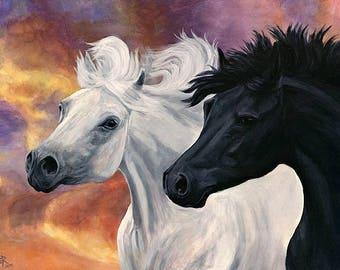 Ebony and Ivory - Arabian Horses - Giclee Equine Art Print from acrylic painting