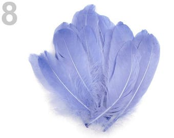 008 - Set of 5 purple blue goose 16/21 cm