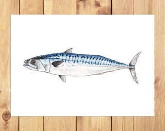 Mackerel A4 Print