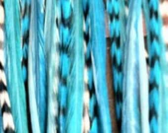 "6""-12"" Light Blue Remix 5 Feathers"