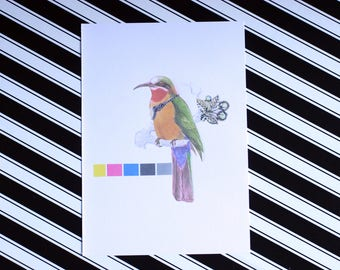 CMYK - A5 Colour - Classy Bird Bee Eater Fashion Print - Eco Friendly - Recycled Paper