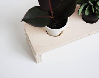 Modern Planter for Tabletop Minimal