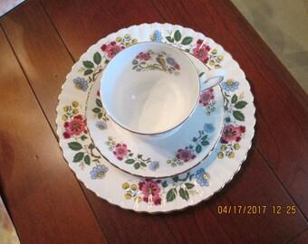 English Bone China 3 pc Cup Saucer Dessert Plate  Royal Staffordshire