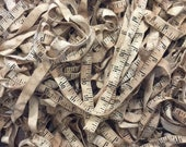 """LADY DOT Twill Tape """"Vintage Ruler"""" • 2 Consecutive Yards"""