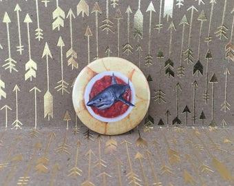 salsa shark, sharks in the salsa, clerks pin,  1.5 inch pin back button, 37 mm pinback button