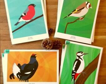 A4 bird poster digital art black grouse, bullfinch, goldfinch or great spotted woodpecker