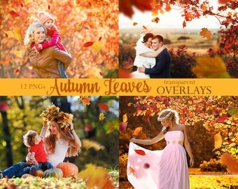 12 Fall Autumn Falling Leaves Transparent Overlays 300dpi PNGs for your Photography