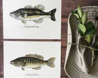 2 PRINTS, Largemouth Bass and Smallmouth Bass, 2 fish prints, 8x10 or 11x14