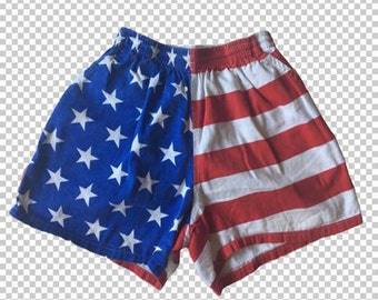 SMALL 1980s Peace Frog USA American Flag Shorts // Red White and Blue 80s Retro Sports Shorts