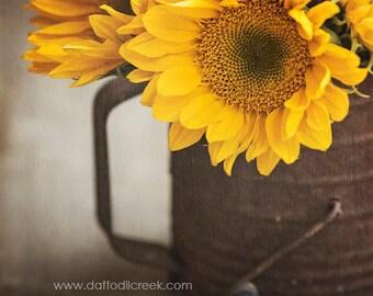 Elegant Sunflower Decor, Sunflower Wall Art, Yellow Wall Decor, Sunflower Photo,  Rustic Farmhouse Part 12