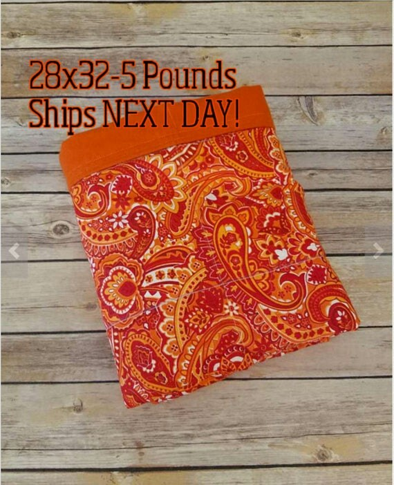 Paisley, 5 Pound, WEIGHTED BLANKET, Ready To Ship, 5 pounds, 28x32, for Autism, Sensory, ADHD, Calming, Anxiety,
