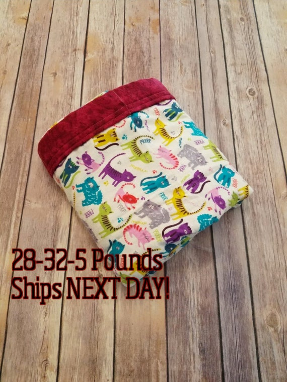 Cat, Kitty, 5 Pound, WEIGHTED BLANKET, Ready To Ship 5 pounds, 28x32, for Autism, Sensory, ADHD, Calming, Anxiety,