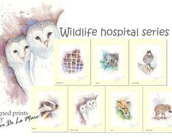 Wildlife Hospital Series